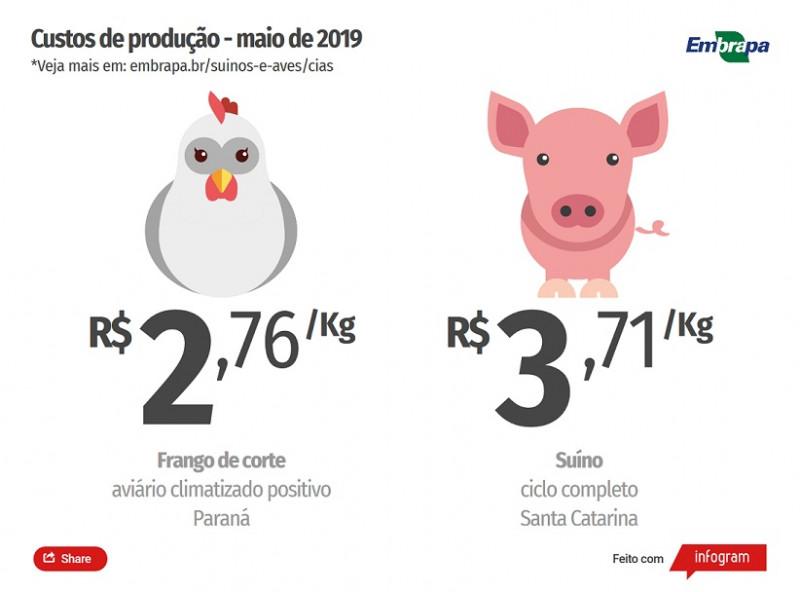 Custo de produção de suínos cai no mês de maio