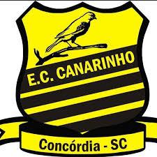 Canarinho vence no Campeonato Sul Brasileiro de Base