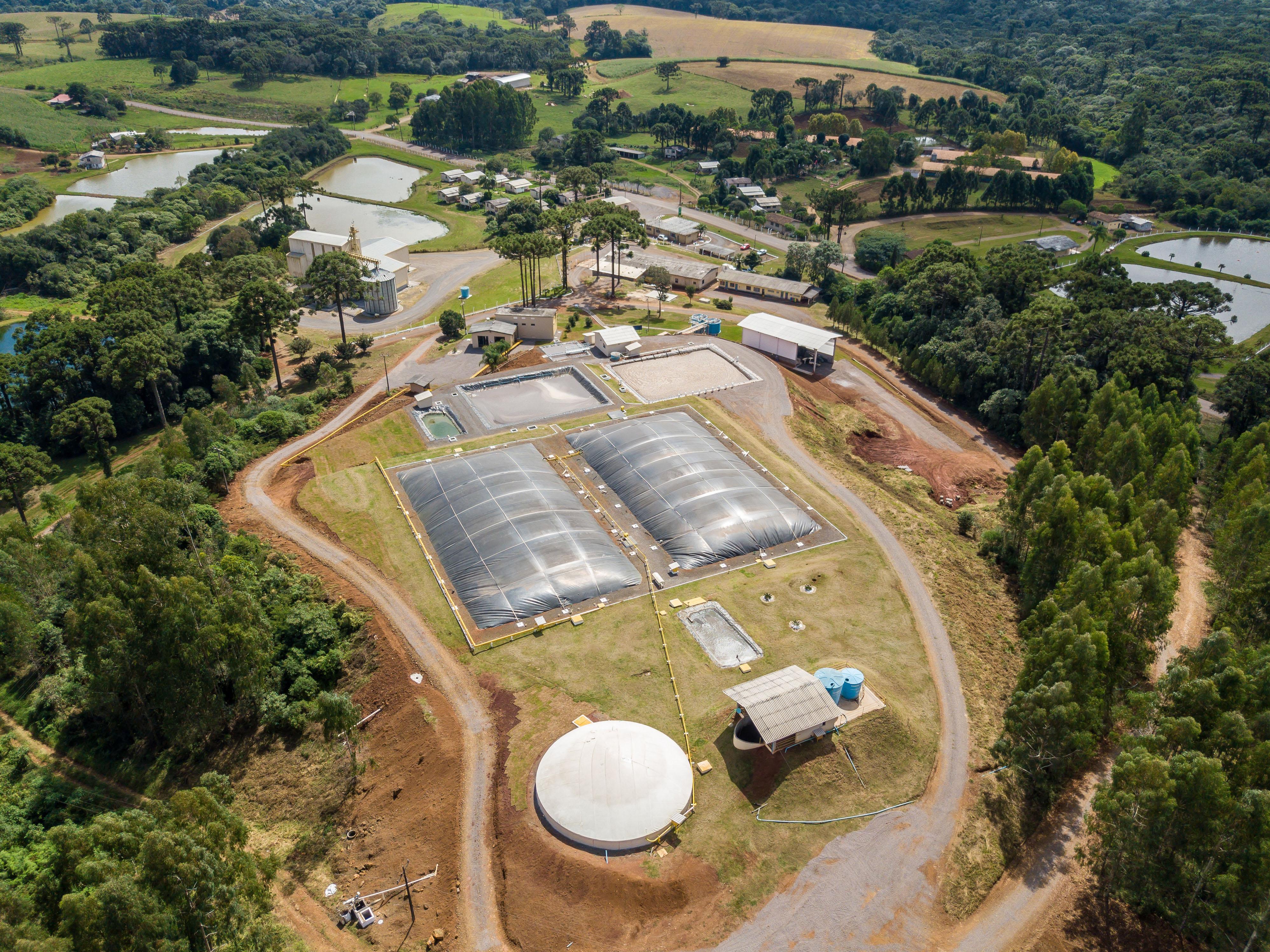 Sanidade animal e destino de resíduos das granjas são destaques da Embrapa no Simpósio Brasil Sul
