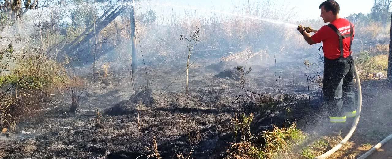 Incêndio em vegetação assusta moradores do bairro Petrópolis em Concórdia