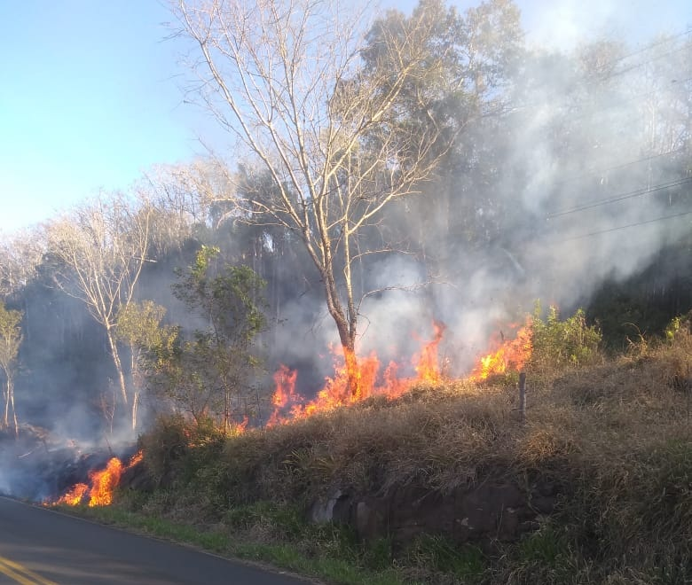 Mais incêndios em vegetação seca são registrados em Concórdia e na região