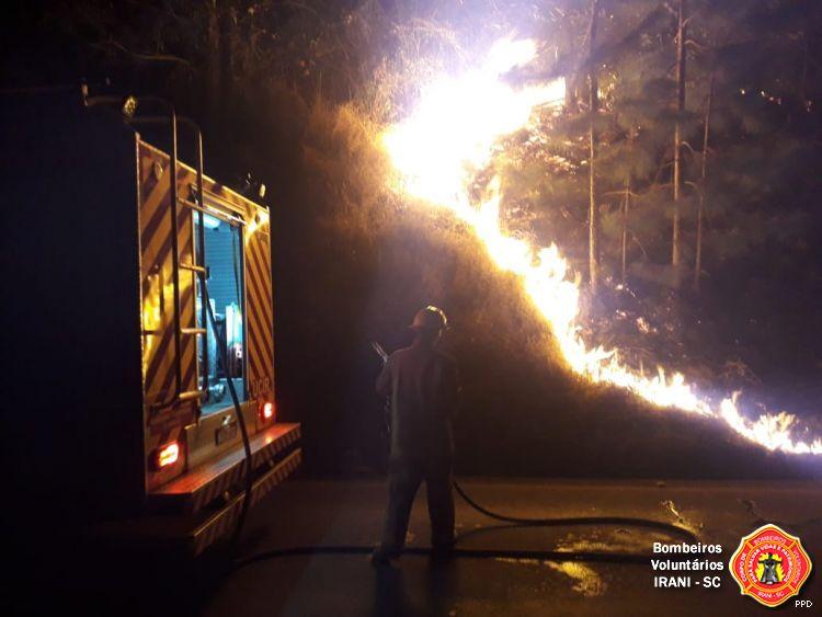 Incêndio queima aproximadamente mil metros quadrados de vegetação em Irani