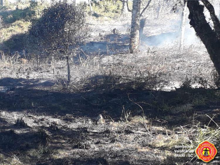 Novo incêndio em vegetação mobiliza bombeiros em Irani