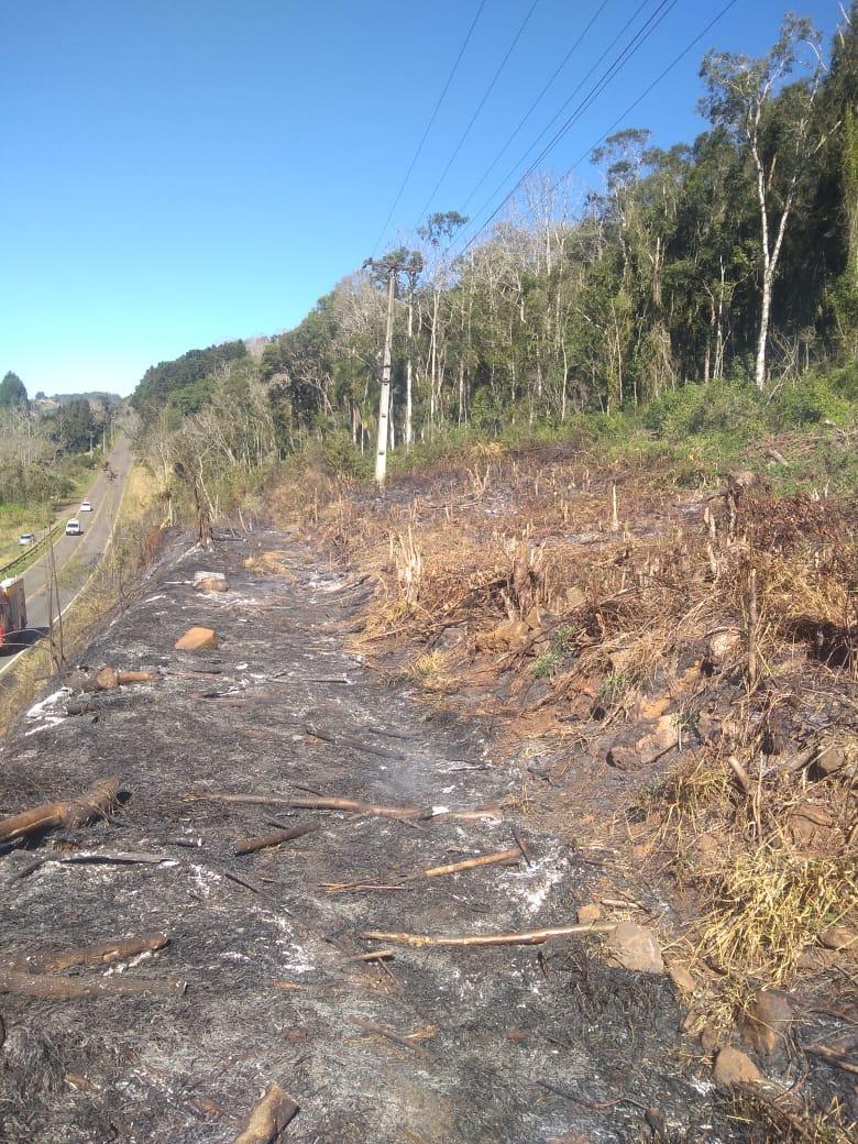 Alto Bela Vista também registra segundo caso de incêndio em vegetação em 24h