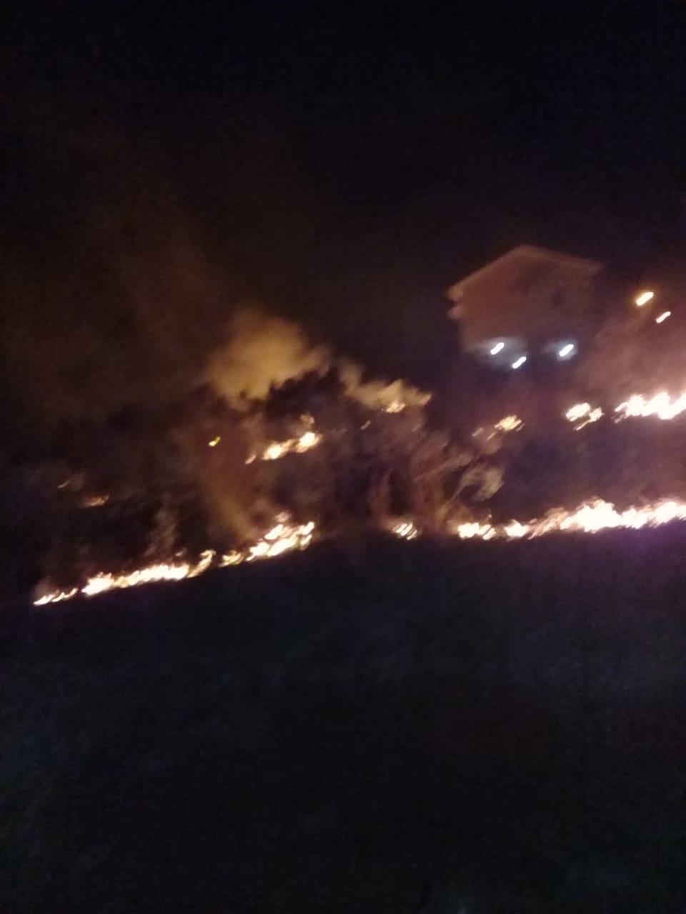 Incêndio em vegetação queima dois mil metros quadrados de área em Suruvi