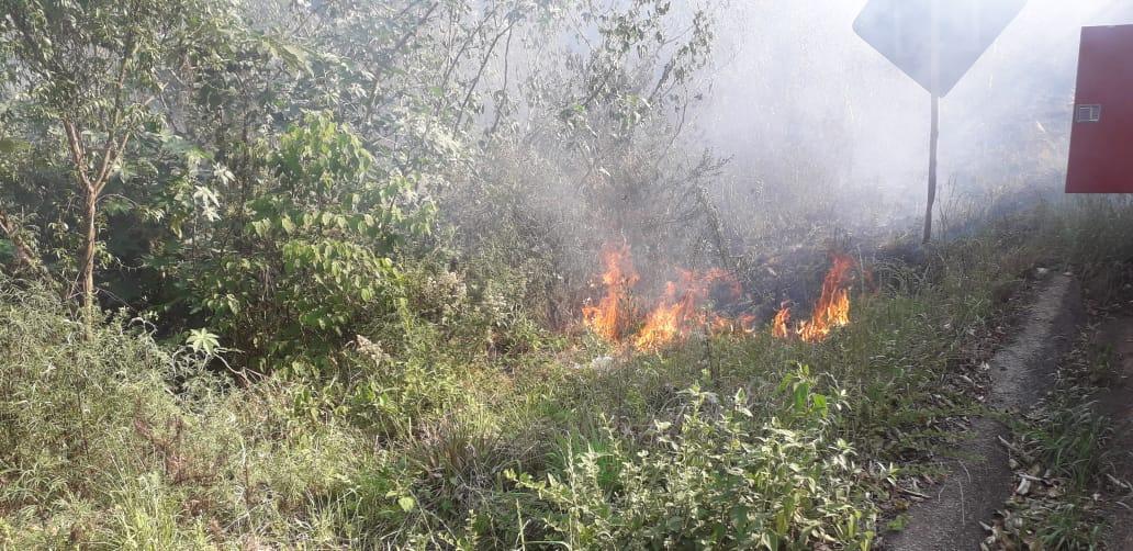 Incêndio em vegetação no Contorno Norte em Concórdia