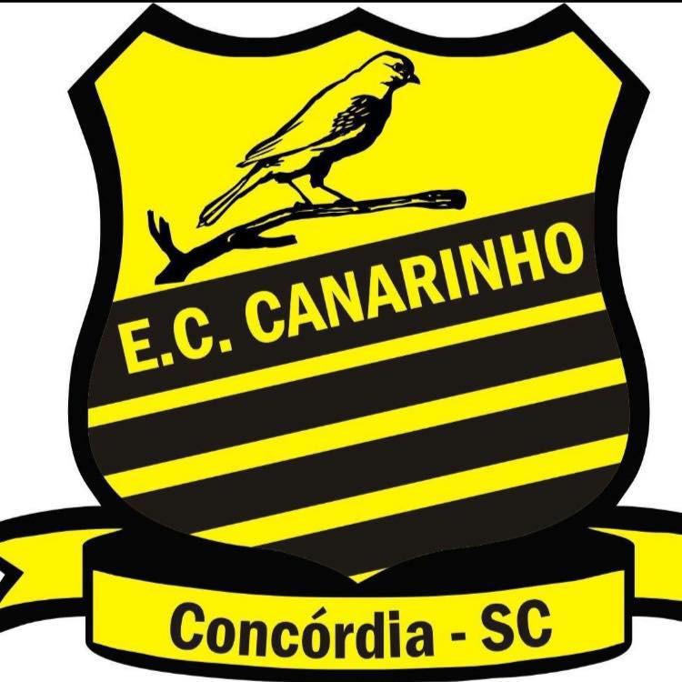 Canarinho disputa o terceiro lugar no Campeonato Sul-Brasileiro de Base