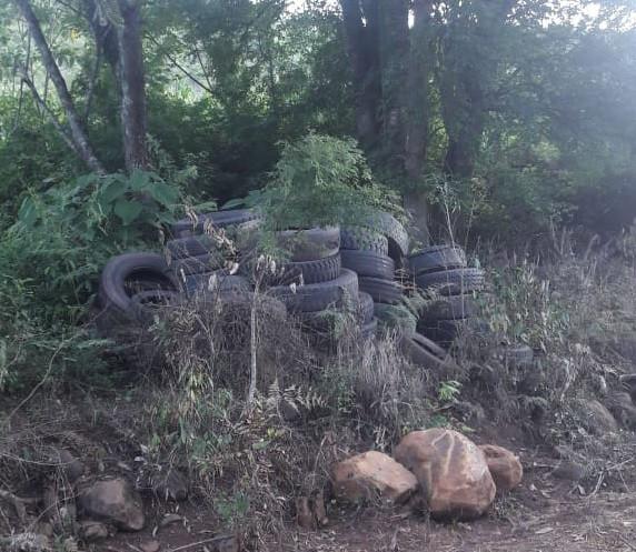 Moradores do interior de Concórdia reclamam de que consideram depósito irregular de pneus