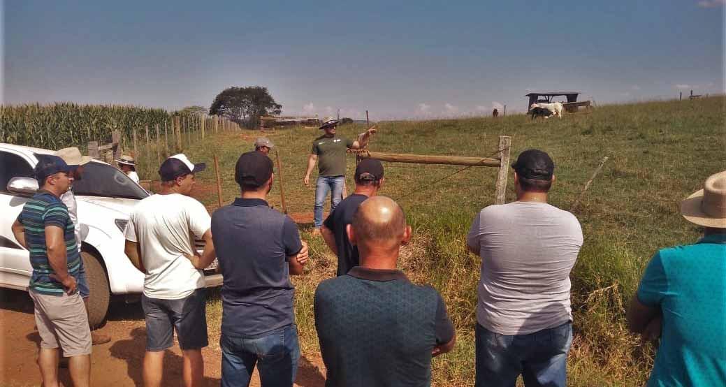 Oficina aborda manejo e produção de pastagens em Concórdia