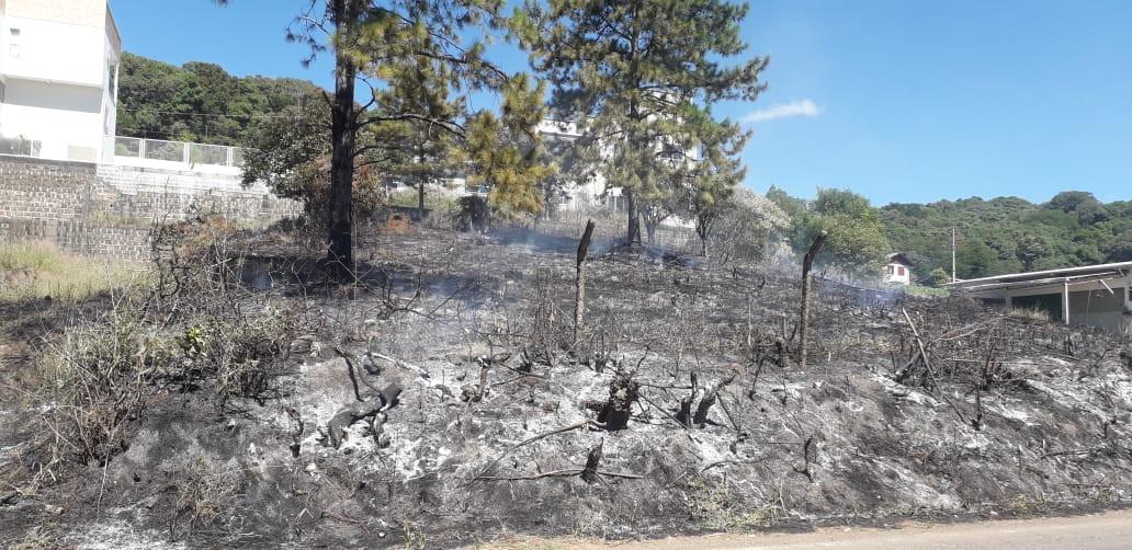 Dois incêndios em vegetação foram registrados na manhã desta terça-feira em Concórdia