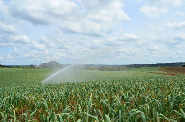 Estado investe R$ 4,5 milhões em projetos para captação, armazenagem e uso da água no meio rural