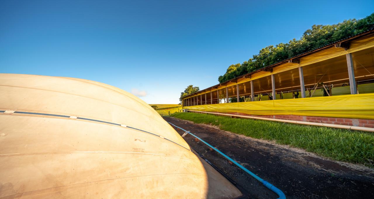 3º Fórum Sul Brasileiro de Biogás e Biometano abre inscrições para webinars em setembro