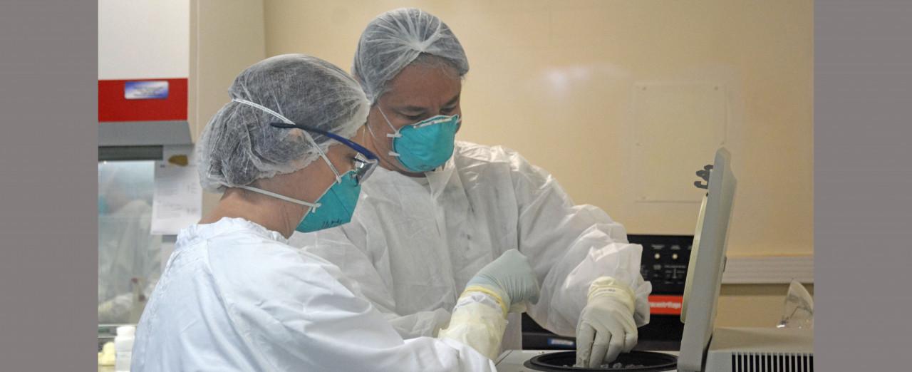 Embrapa Suínos e Aves faz 24,7 mil testes de Covid-19 em 2020