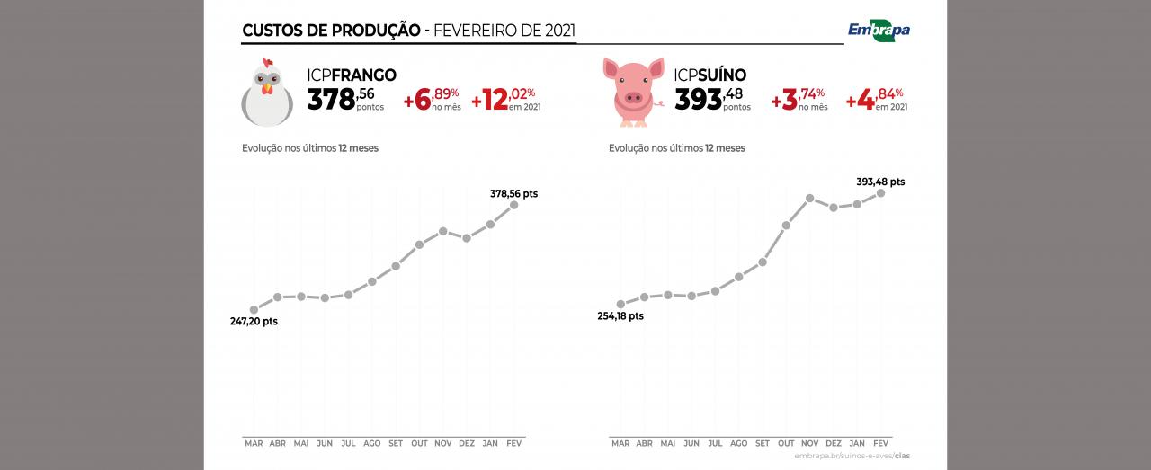 Custos de produção de frangos de corte e de suínos acumulam alta de mais de 48% nos últimos 12 meses