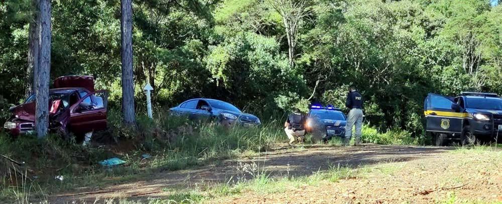 Motorista foge de fiscalização na BR 153 em Concórdia e bate carro em uma árvore