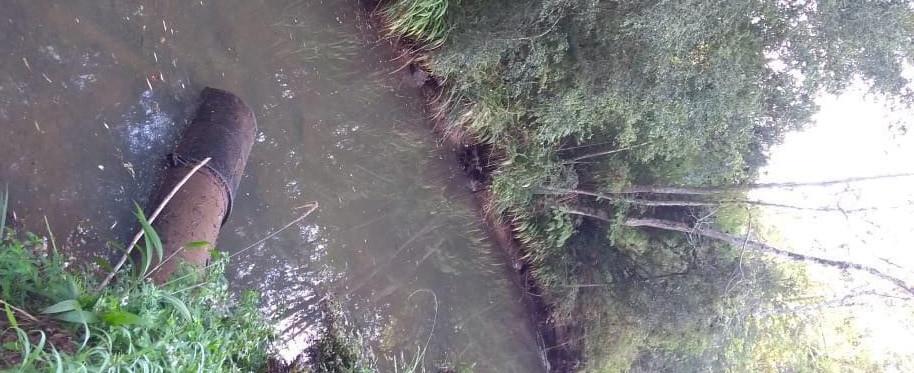 Chuva dos últimos dias ameniza quadro de estiagem