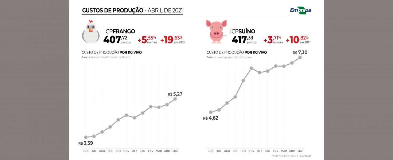 Custos de produção de frangos aumentam quase 20% entre janeiro e maio
