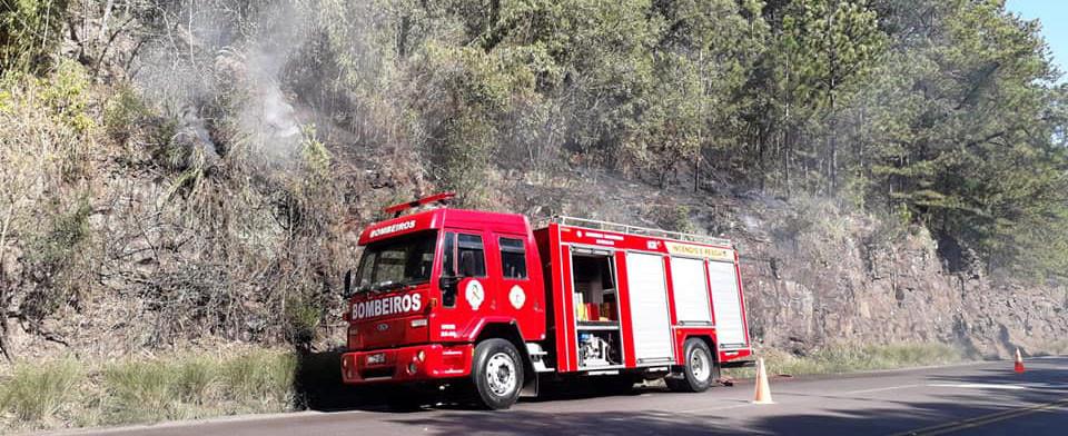 Incêndio em vegetação queima quase 2 mil m² de área às margens da BR 153
