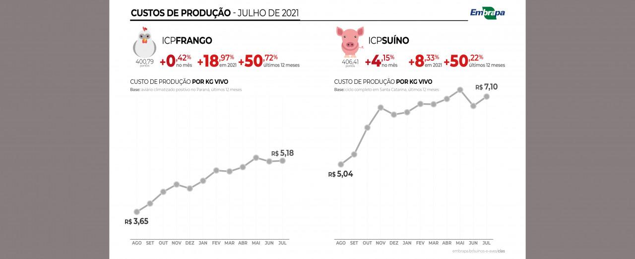 Custos de produção de suínos e de frangos de corte acumulam alta de 50% nos últimos 12 meses