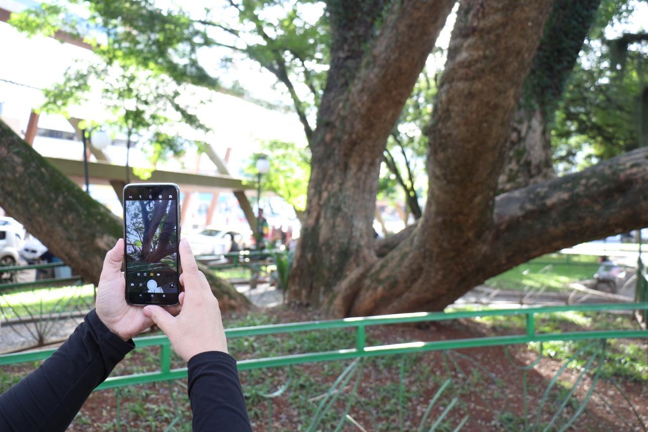 Concurso vai eleger melhores fotografias de Concórdia