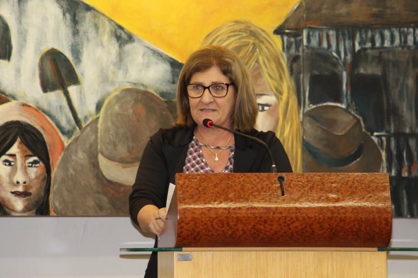 Marilane pede cópia de documentos ligados às Ruas Horácio Sandi e Victor Sopelsa